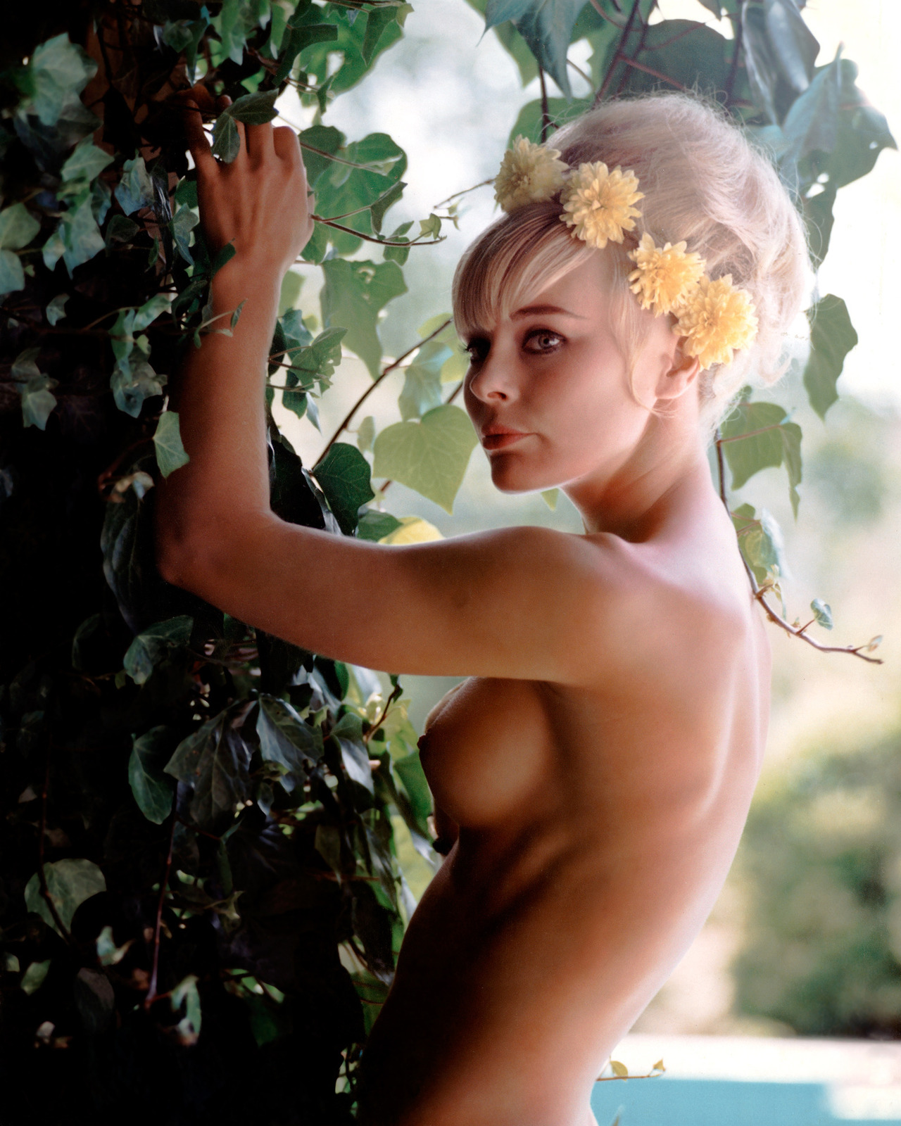 Images Samantha DiGiacomo nudes (94 photos), Tits, Leaked, Boobs, swimsuit 2006